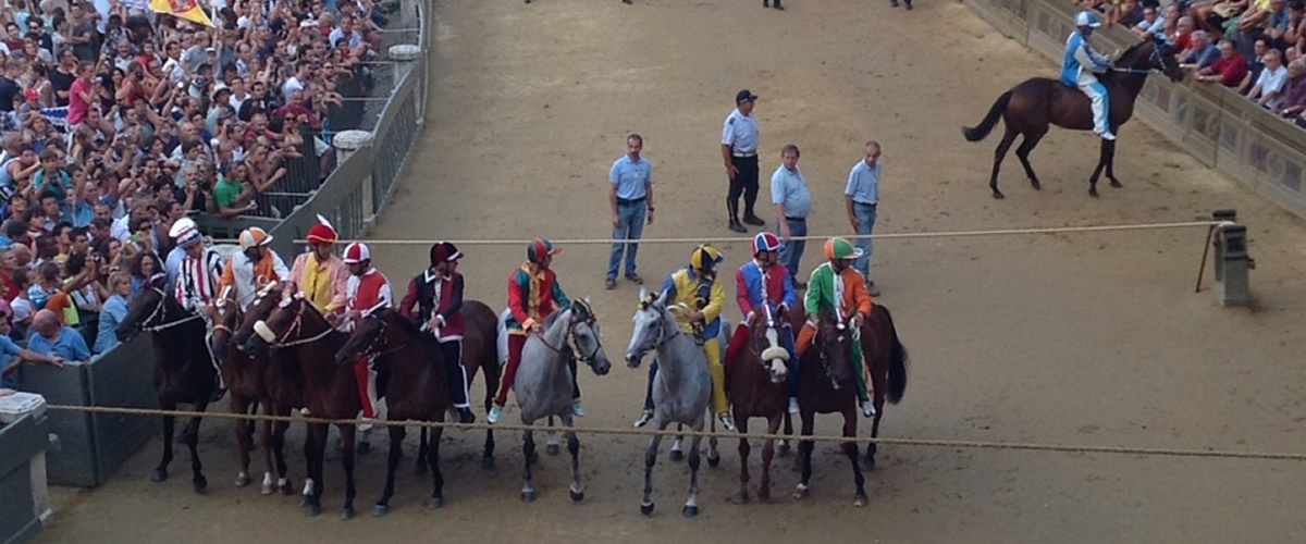 The Palio horse Race Siena